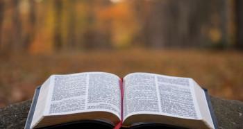Escola Bíblica presencial e on-line